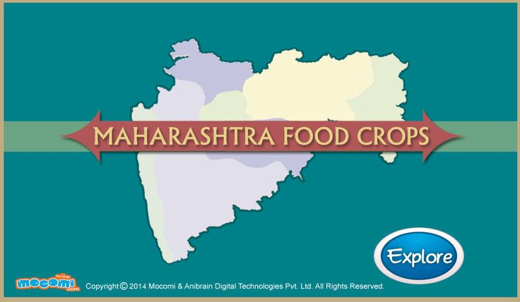 Read about what are the main #foodcrops grown in #Maharashtra. Just drag & drop the crops on the Maharashtra map to know Maharashtra food crops. For more #geography stuff for kids, visit: http://mocomi.com/learn/geography/