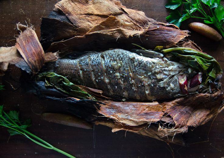 33 best images about finger limes are a taste sensation for Barramundi fish taste
