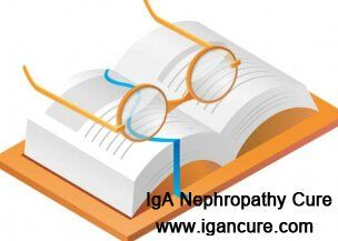 What Happens if Serum Creatinine Increases to 2.4 for IgA Nephropathy Patients