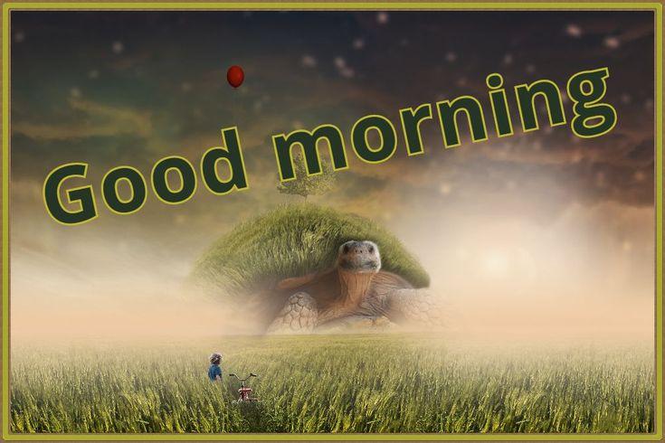 Good morning and goodnight pictures to download-Immagini buongiorno e buonanotte dascaricare