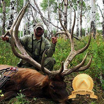 Estate elk hunting in Colorado