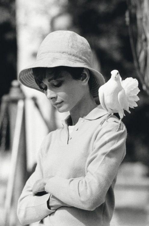 Paisible Audrey et ami à plumes