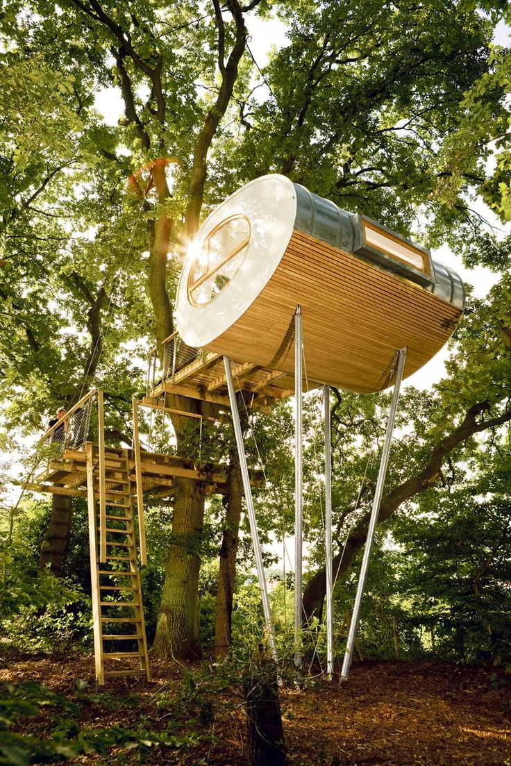 Lofty ambitions: Three sophisticated tree house designs - The Globe and Mail