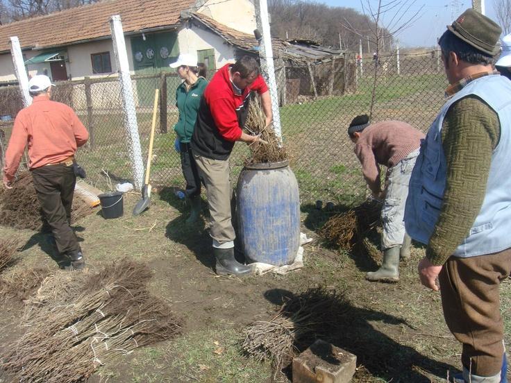 Cel mai adesea, în localităţile rurale, gunoiul de grajd este depozitat în condiţii improprii atât la nivelul gospodăriilor individuale cât şi la nivelul localităţilor, fără a exista nici o măsură împotriva scurgerilor şi infiltraţiilor fracţiilor lichide (urină plus ape din precipitaţii).    Acest fapt afectează mediul înconjurător, în special solul şi apele subterane sau de suprafaţă.