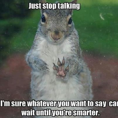 Funny Squirrel ... Deb, this made me think of you instantly