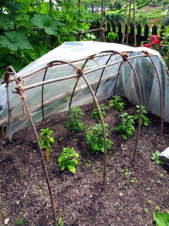 Get Your Garden Ready for Winter | HGTV Gardens