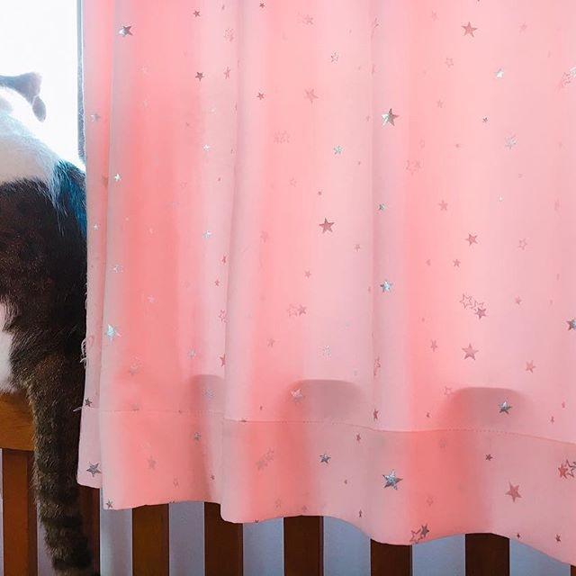 金曜日から調子が悪く、午前中で早退。 そこから38.5℃の熱😭 久しぶりの高熱にうさなれる事2日。やっと熱は下がったけど、眠り過ぎて背中痛い😫 バキバキするーー😱 今日は起きてバキバキを治します。 #発熱 #夏風邪 #背中バキバキ #大雨 #猫 #愛猫 #名前はくう