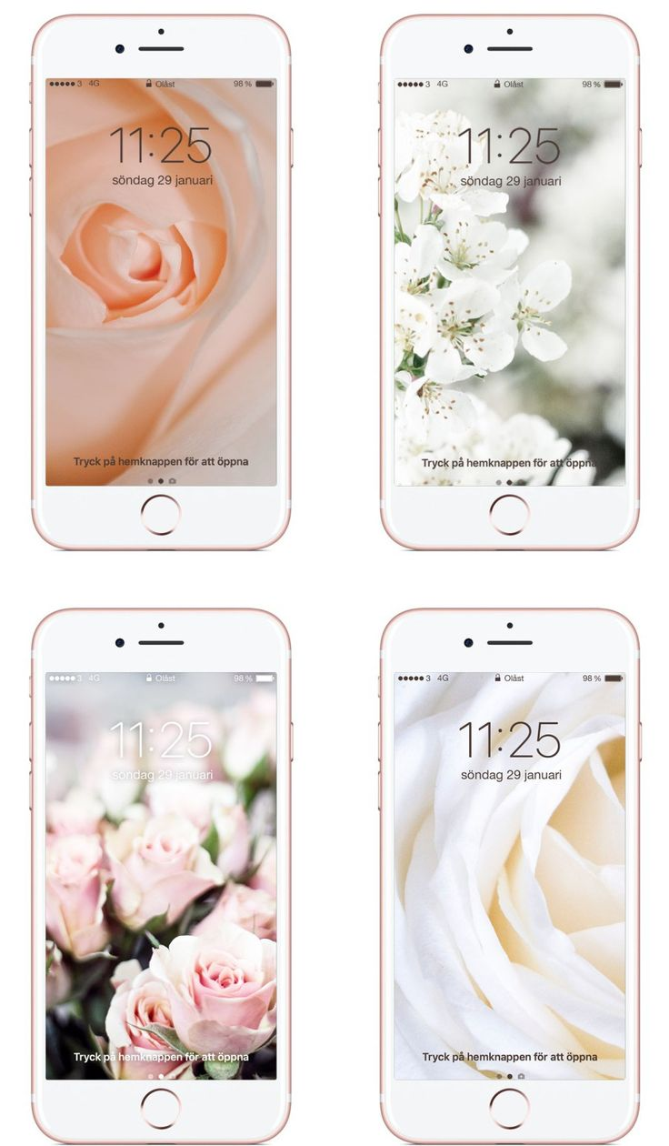 iPhone Wallpapers : Flowery