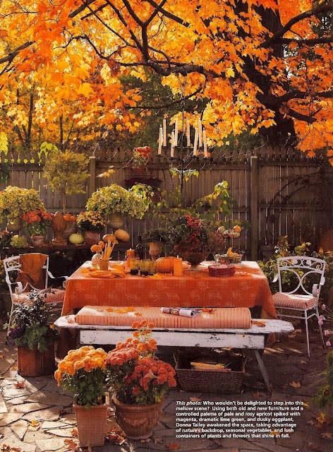 Autumn dining room al fresco I styled for Country Gardens magazine.  Photographed by Andre Baranowski.