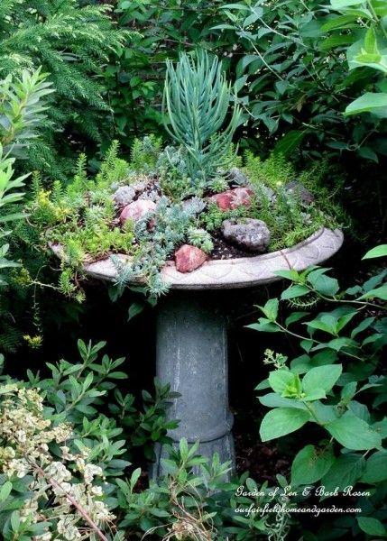 Birdbath planter filled with succulents - love this garden! eclecticallyvintage.com