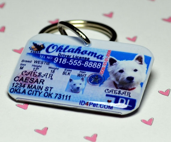 Personalized doggie tag. You can do other states, too.