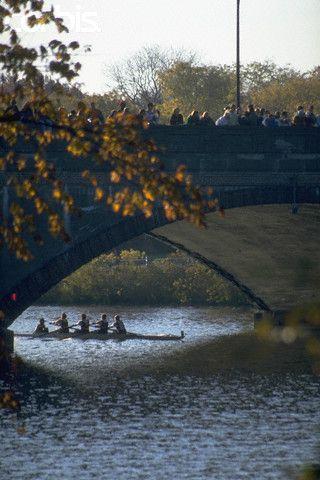 Crew Team Rowing under Bridge