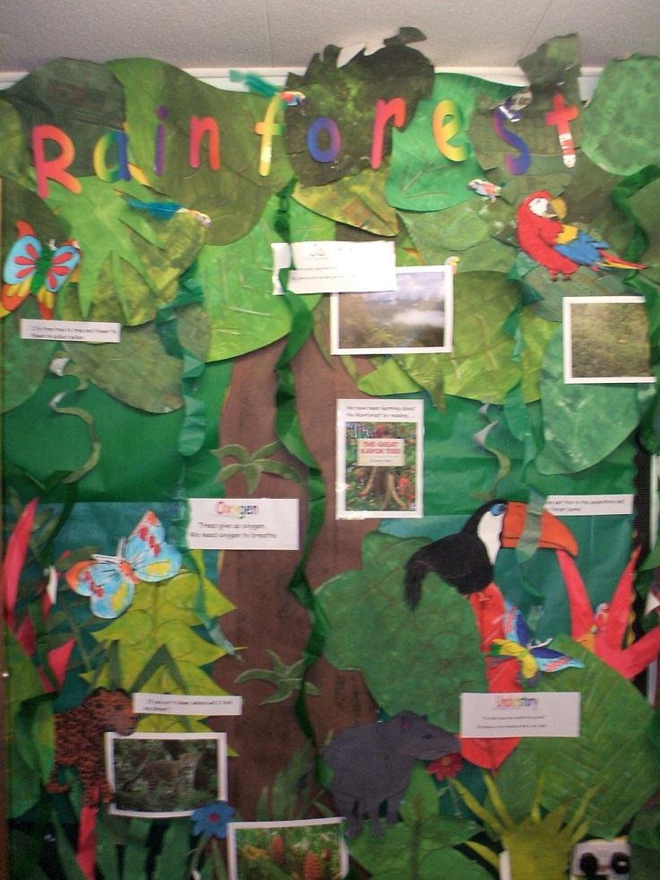 This would be such a cool bulletin board. This gives students a great visual and adds decoration to the classroom. Any biome or habitat could be portrayed as a bulletin board.