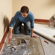 Are you concerned about carpet mold and wondering how to get rid of it? We have the information you're looking for at https://www.bustmold.com/ottawa/carpet-mold-removal