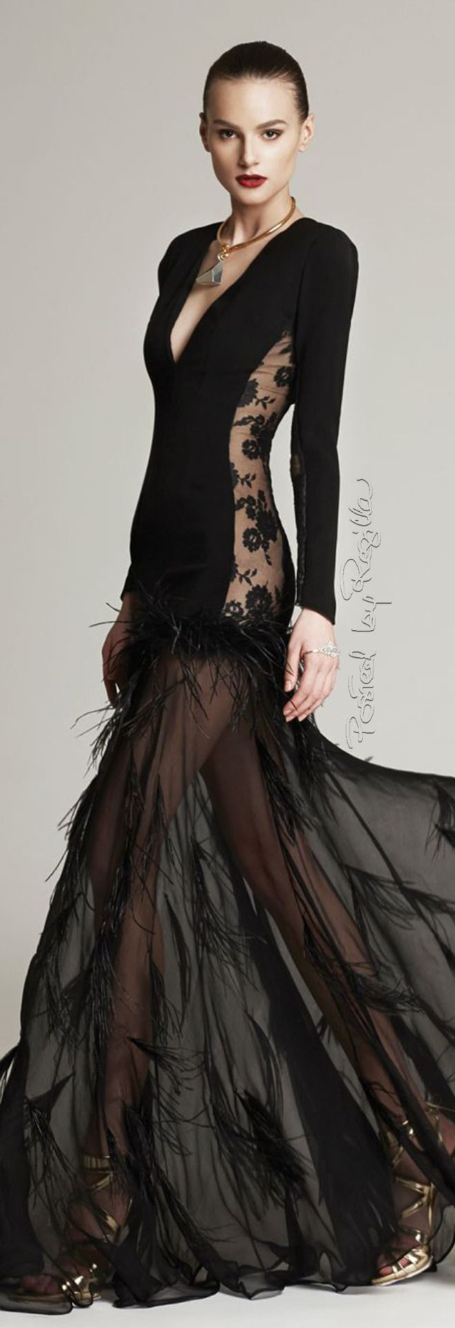 Christina Savulescu ~ Black Long Sleeve Gown w Sheer Embroidered Side Panels + Skirt 2015.