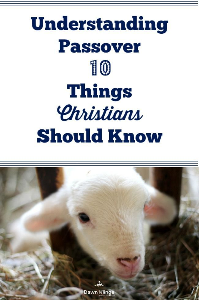 Understanding Passover: 10 Things Christians Should Know I what Christians should know about Passover I the meaning of Passover I traditions of passover I how passover is connected to Christianity I passover and the gospel message I Above the Waves II #passover #gospel