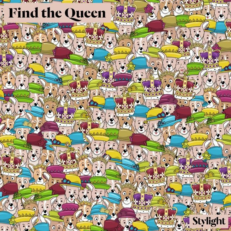 #FindtheQueen amongst the corgis! #HappyBirthdayYourMajesty