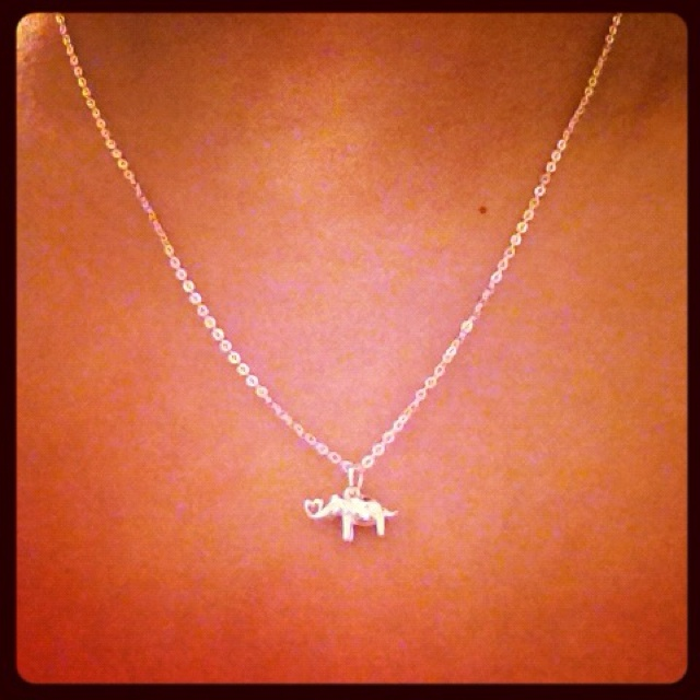 The necklace I just bought. I love elephants. <333