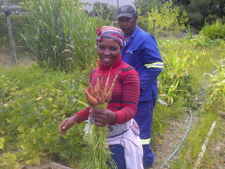 Happy faces with the fruits (or carrots!) of their harvest