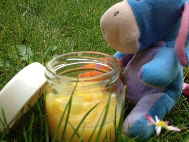 Compote de pomme aux abricots secs - à partir de 6 mois