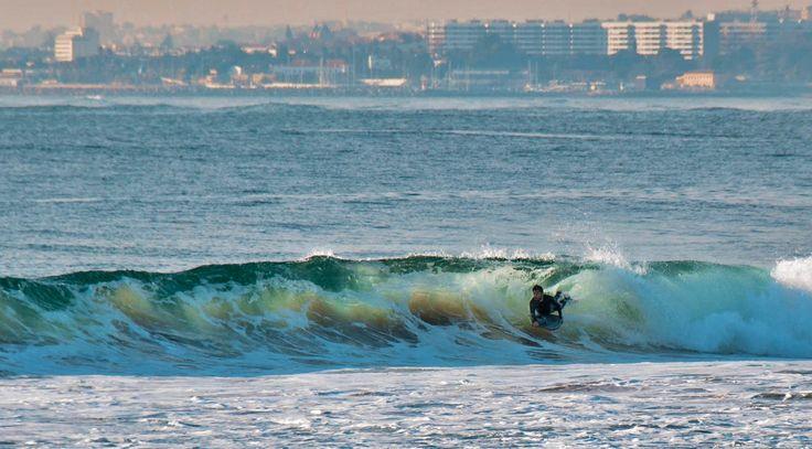 sandie wave