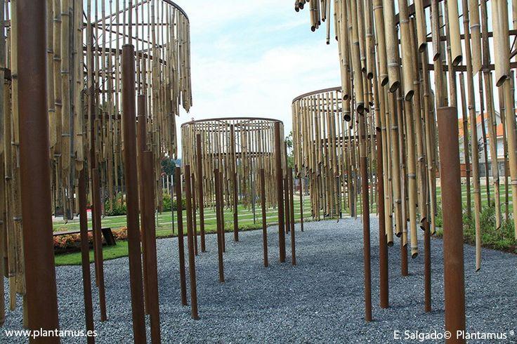 Festival de jardines de Allariz 2015