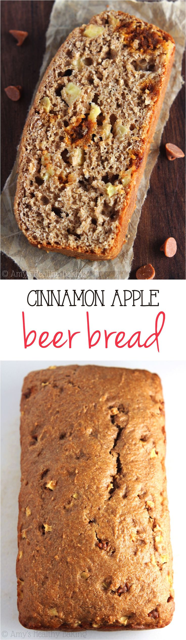Cinnamon Apple Beer Bread -- a sweet & healthier recipe that's perfect for fall! My family made the whole loaf disappear in 5 minutes -- it's THAT good!