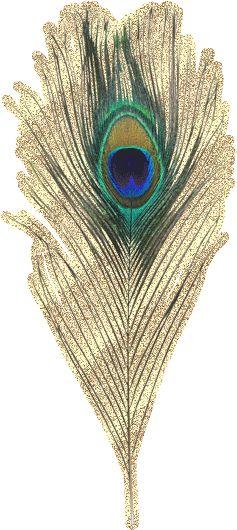 Анимация картинки перья, красивой девушке