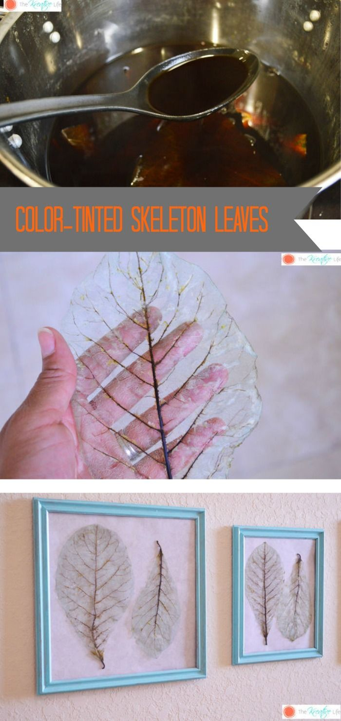Decorate with natural elements ~ this tutorial for color-tinting skeleton leaves is wonderful inspiration.