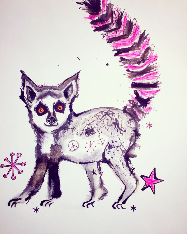 Lenny Lemur ink drawing by Lizzie Reakes