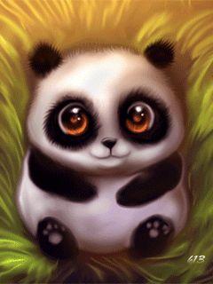 Pandy de aby