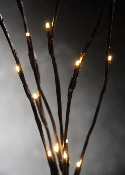 Brown Wired Christmas Lights