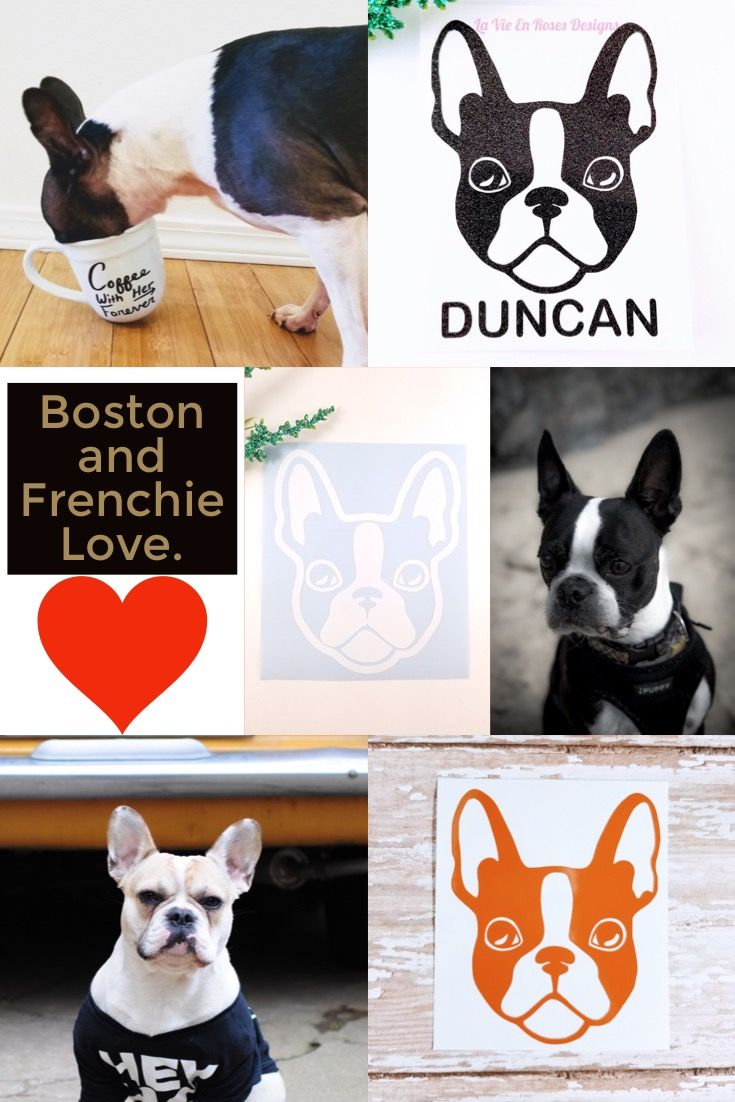 Boston Terrier Decal French Bulldog Decal Cup Decal Instant Etsy Boston Terrier Cup Decal Personalized Decals [ jpg ]