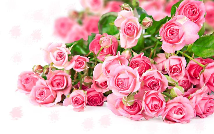 hd Pink Rose Bouquet Wallpaper | Wallpaperwonder