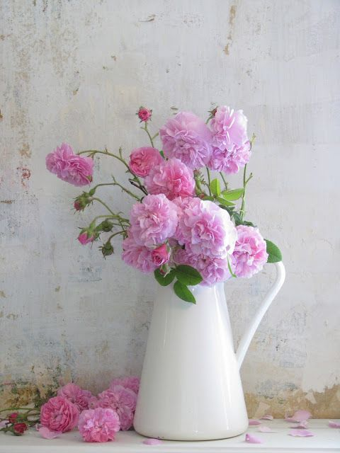 Pink roses, white jug   Wayside Treasures