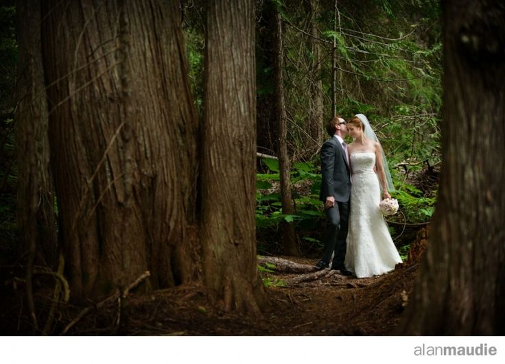 Bride and Groom in and Old Growth Forest, Cedar grove, Island Lake Lodge, Fernie wedding photographer