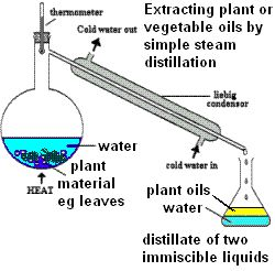 AQA gcse science Unit 1 CHEMISTRY C1.6 Plant oils and their uses Vegetable oils emulsions Saturated and unsaturated oils