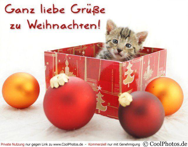 Lieben Gruss Zu Weihnachten Liebengrusszuweihnachten Liebe Grusse Zu Weihnachten Grusse Zu Weihnachten Grusse Zum Weihnachtsfest