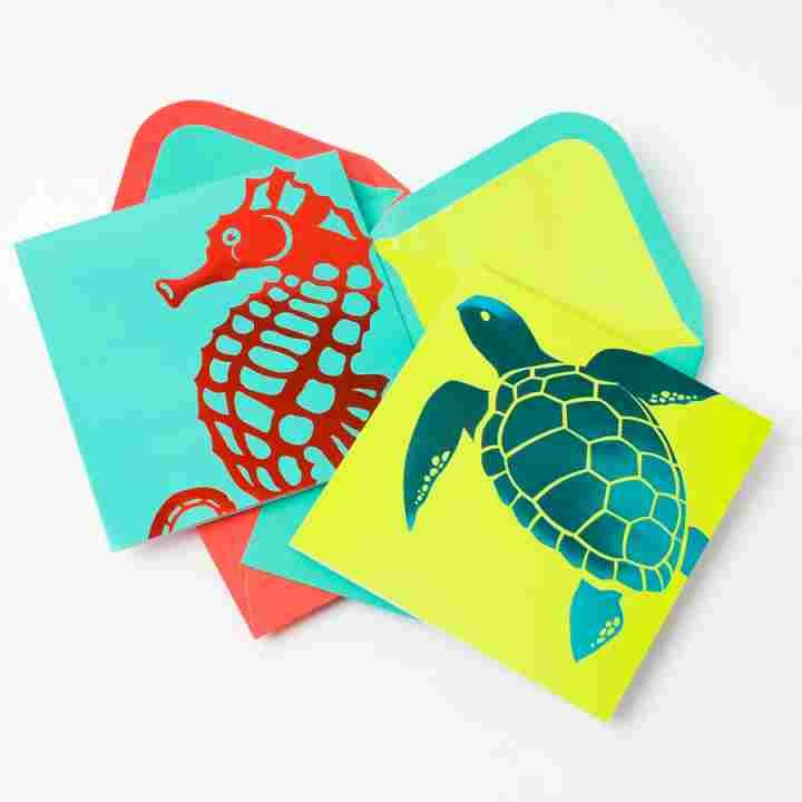 Graphic Sea Life Assorted Note Cards (Set of 20) - Assorted Greeting Cards - Boxed Note Cards - Stationery