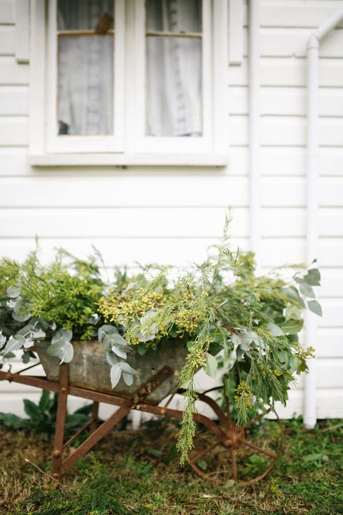 Seeded eucalyptus in a vintage wagon