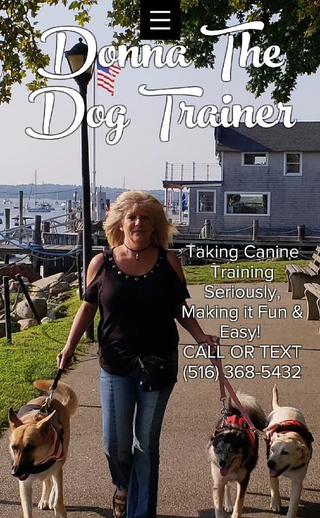 Long Island S 1 Dog Trainer Dogs Puppies Dog Training Dogs