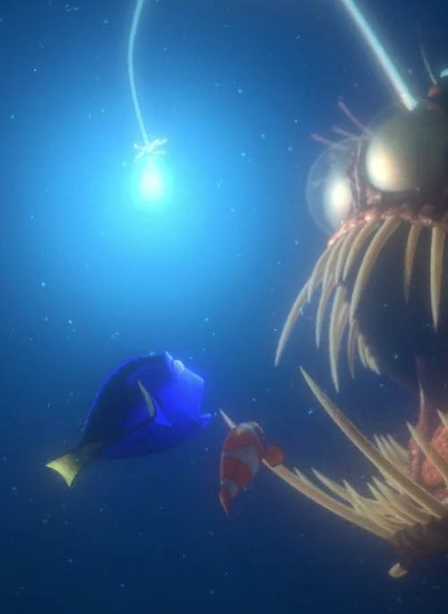 Favorite scene in finding nemo