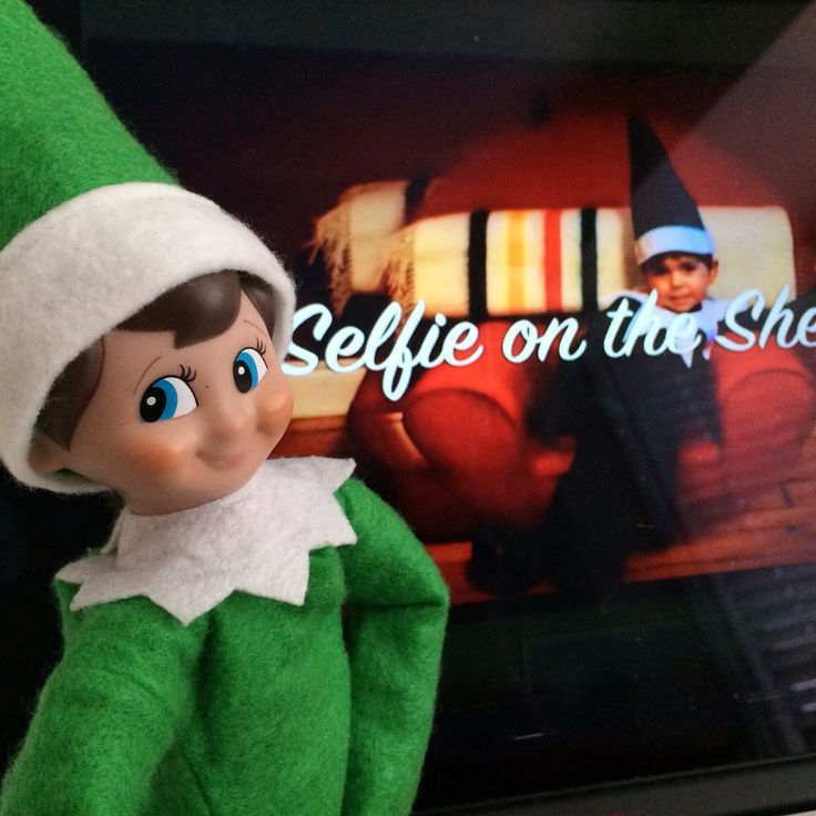 Did you see Selfie promoting the show with his friends on Rogers Daytime Ottawa yesterday?? You know Bud sure did!! For more information on Freezing - A Witty, Wintery Family Musical check out www.itsfreezinginottawa.com!! #everydayottawa #selfieontheshelfie #itsfreezinginottawa #ottawa #ottawatourism #gladstonetheatre #daytimeottawa #rogers22
