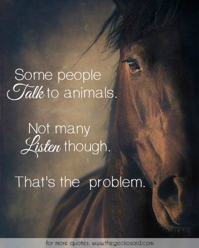 Some people talk to animals. Not many listen though. That's the problem.  #animals #listen #many #people #problem #quotes #some #talk
