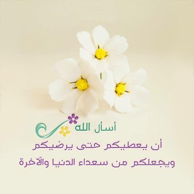 Pin By تدبروا القرآن الكريم On Islamic Pictures Love U Mom Islamic Pictures Loving U