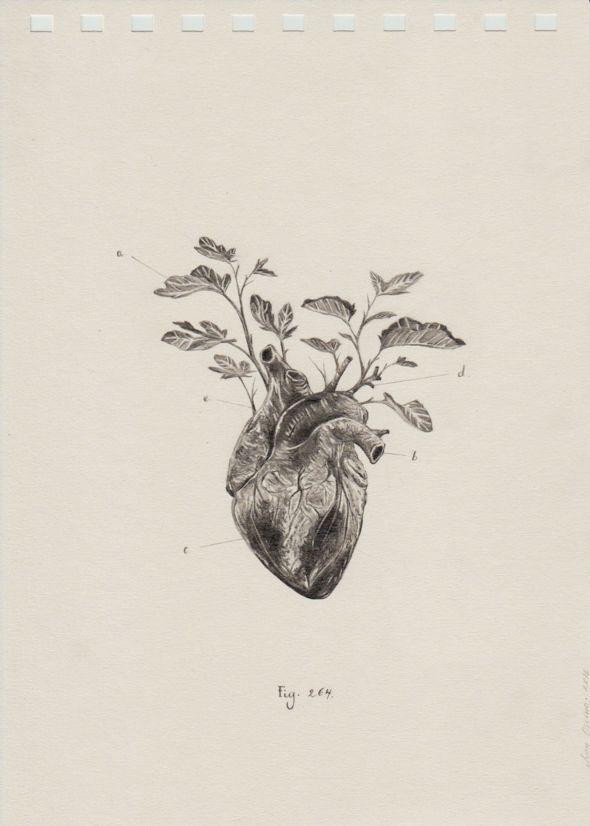 juan-osorno-dibujante-colombia-01                                                                                                                                                                                 Más