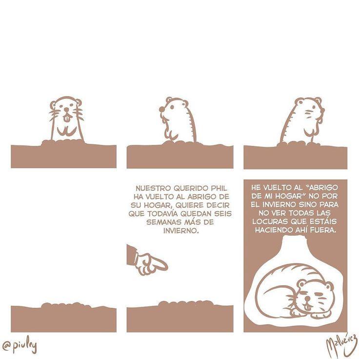 Día de la Marmota : #WebcomicZ 033 : #ClipStudioPaint  #Cintiq  #: #webcomic #comics #comicdiario #dailycomic #comic #tebeo #illustration #draw #sketch #drawing #art #artistsoninstagram #dibujodiario #cute #adorable #digital #digitalpainting #digitalart : #DailySketch 764 #diadelamarmota #groundhogday #marmota #groundhog