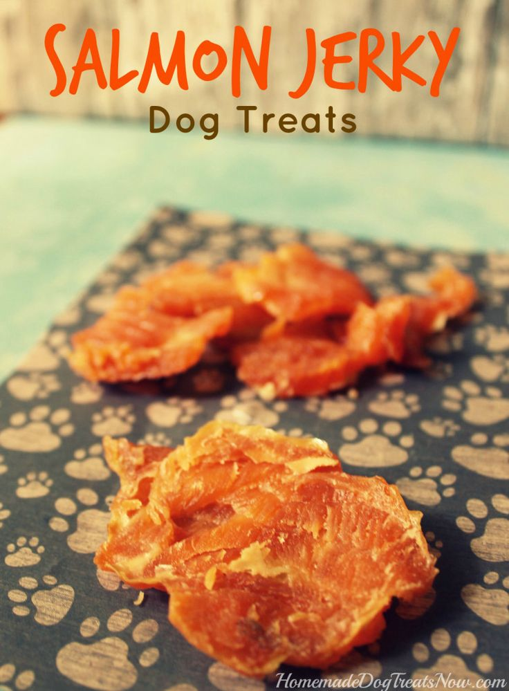145 best dog treats homemade images on pinterest dog for Can my dog eat cooked fish
