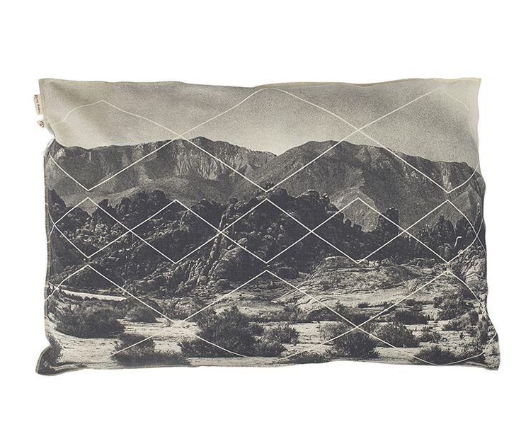 Desert Springs Pillow Case | Pony Rider