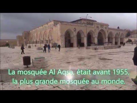 aicha islam shared a video